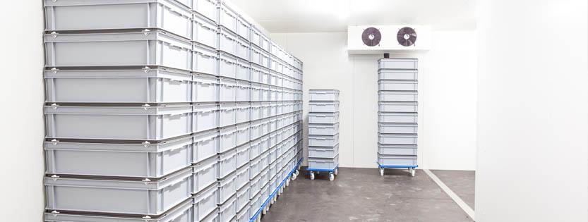 Cómo organizar una cámara frigorífica correctamente | Puertas Frigoríficas Doorfrig